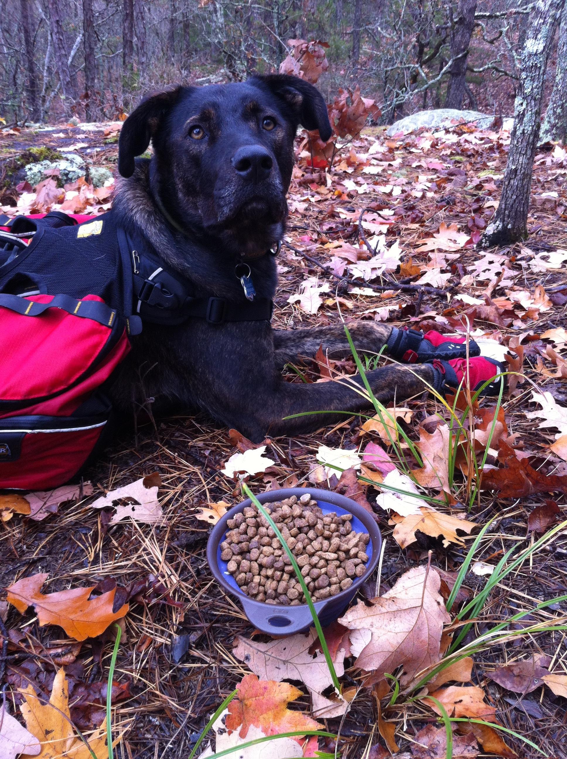 2012 11 11 OHT Hike 23