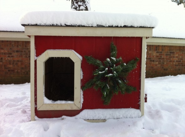 2012 12 26 Snowy Doghouse
