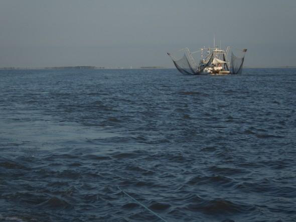 South Louisiana commercial shrimp boat, Barataria Bay.
